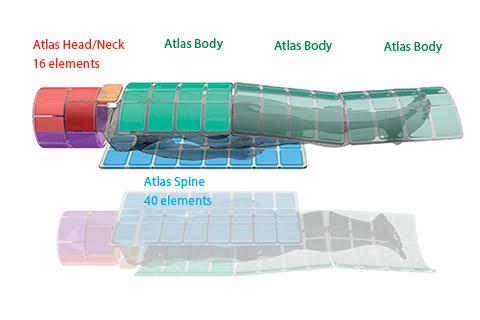 Atlas Spine Coil
